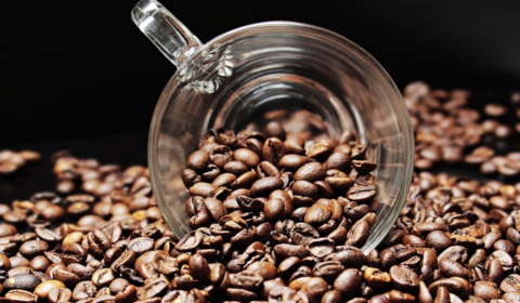 java coffee keys coffee company key west