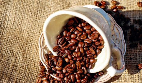 Porcelain Coffee Beans Coffee Beans Coffee Cup