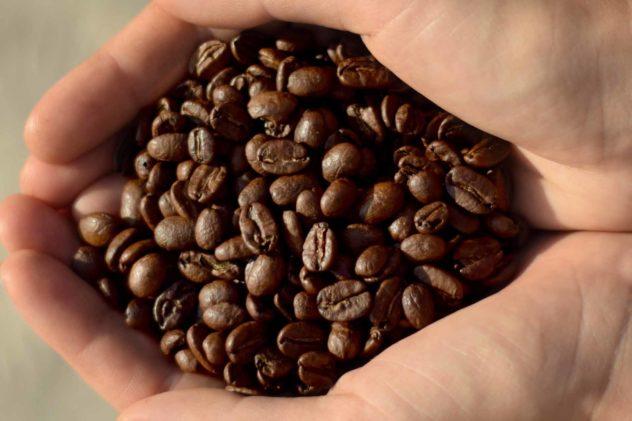 keys coffee co colombian popayan beans