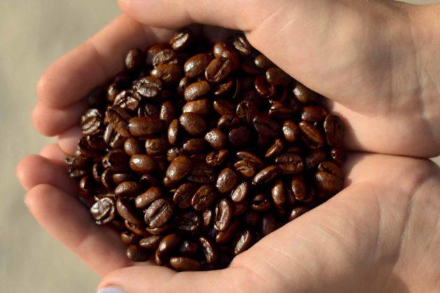 keys coffee co hazelnut cream beans